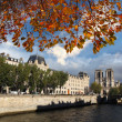 Notre Dame cathedral during autumn in Paris, France — Stock Photo