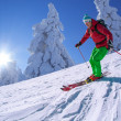 Skier skiing downhill in high mountains during sunny day — Stock Photo #50730289