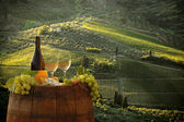 Bottle of white wine with barrel on vineyard in Chianti, Tuscany, Italy — Stock Photo