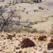 Desert landscape. Flinders Ranges. South Australia — Stockfoto