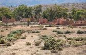 Ruins of abandon Kanyaka homestead. Flinders Ranges. South Australia. — Stock Photo