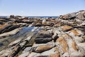 Rock pool nära Ulla Ulla pount. bingie (nära morua). Nsw. Aus — Stockfoto