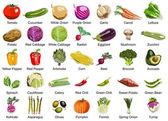 35 gemüse symbole — Stockfoto