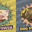Cat and Dog power — Stock Photo #21692065