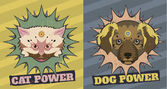 Cat and Dog power — Stock Photo