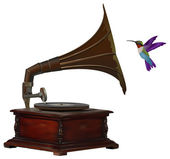 Gramophone and colorful hummingbird — Stock Photo