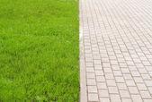 Stonepath and grass — Stock Photo