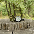 Stock Photo: Compass lies on large tree stump in forest