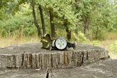 Bússola encontra-se no tronco de uma árvore grande na floresta — Fotografia Stock