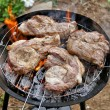 Pieces of juicy fresh meat fried on grill — Stock Photo #38337773