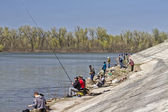 Fishermens catch fish at entrance to the Volga-don navigation canal — Stock Photo