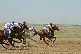 Horse races — Stock Photo