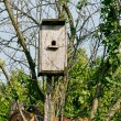 nesting box — Stock Photo