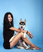 Beautiful girl in the studio with a dog — Foto Stock