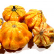 Gourds — Stock Photo #13790321