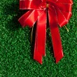 Red Bow on green grass — Stock Photo