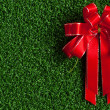 Red Bow on green grass — Stockfoto