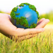 Earth in hand — Stock Photo #33933603