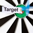 Target concept — Stock Photo
