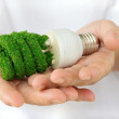 Eco light bulb concept — Stock Photo #35032083