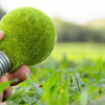 Eco light bulb concept — Stock Photo