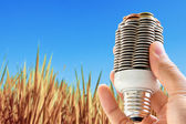 Coin light bulb — Stock Photo
