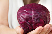 Hand holding red cabbage — Stock Photo