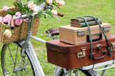 Vintage bicycle with a bag — Stock Photo