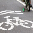 Bike lane — Stock Photo #36308719
