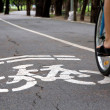 Bike lane — Stock Photo #36308831