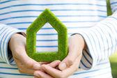 绿房子图标 — 图库照片