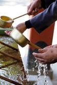 Conchas de purificação do santuário xintoísta — Foto Stock