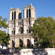 Notre Dame Cathedral - Paris — Stock Photo #16232875