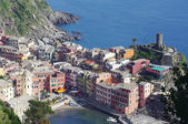 Vernazza from the top — Foto Stock