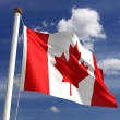 Canada flag (with clipping path) — Stock Photo #12013067