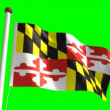 Stock Video: Maryland flag