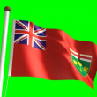 Ontario flag — Stockvideo