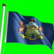 Pennsylvania flag — Stock Video