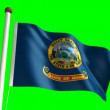 Idaho flag — Stock Video #13915833