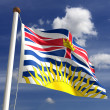 British Columbia flag Canada — Stock Photo
