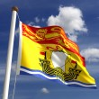 New Brunswick flag Canada — Stock Photo