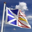 Stock Photo: Newfoundland flag Canada