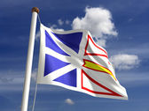 Newfoundland flag Canada — Stock Photo