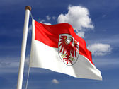 Brandenburg flag Germany — Stock Photo