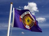 El paso texas abd bayrağı — Stok fotoğraf