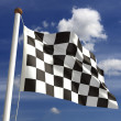 Chequered Flag — Stock Photo #16805111