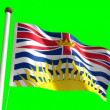 British Columbia flag — Stock Video