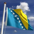 Royalty-Free Stock Photo: Bosnia and Herzegovina Flag