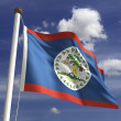 Belize Flag — Stock Photo #20396989