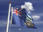 Falkland Islands Flag — Stock Photo